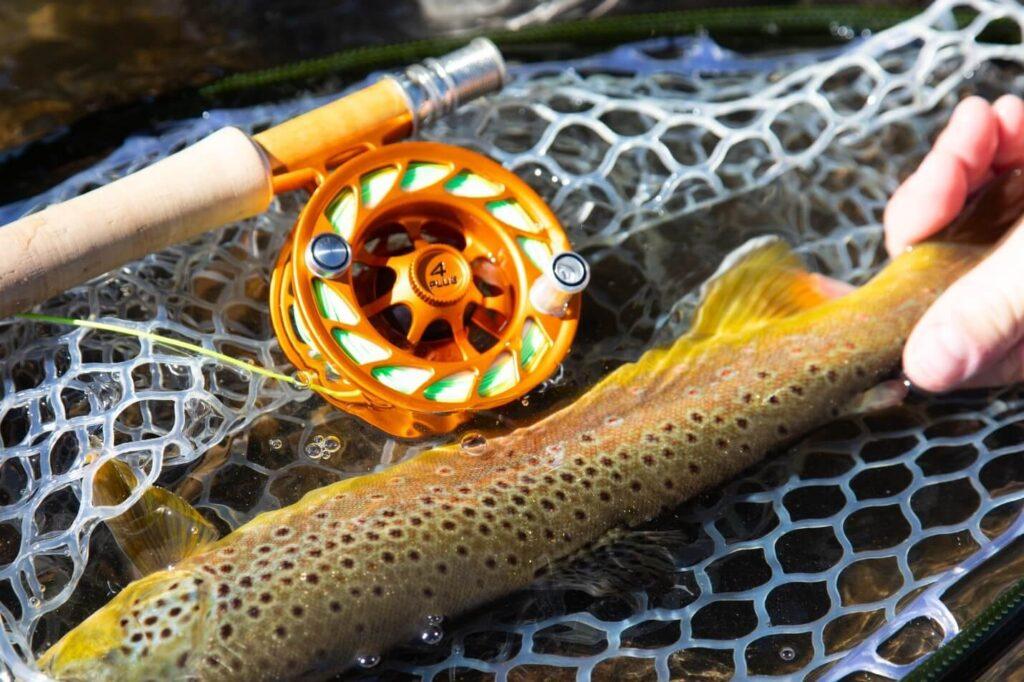 استفاده از قرقره استاندارد برای ماهیگیری